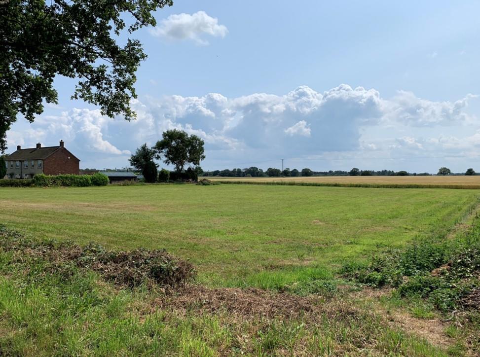 Image of Land At Salhouse Road,<br/> Panxworth,<br/> Salhouse Road,<br/> Panxworth,<br/> Norfolk,<br/> NR13 6JH